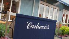 Carluccio's sign