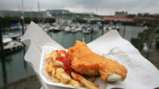 SCARBOROUGH, UNITED KINGDOM - AUGUST 14:  Traditional Fish and Chips dominate the harbour scene on 14 August, 2007, Scarborough, England. The traditional British seaside holiday has managed to maintain is attraction in the face of ever increasing competition from cheap flights, bringing the promise of foreign sun within reach of almost all budgets.  The prospect of sand castles, donkey rides and the 'end of the Pier show' remain a draw for thousands of holiday makers every year.  (Photo by Christopher Furlong/Getty Images)